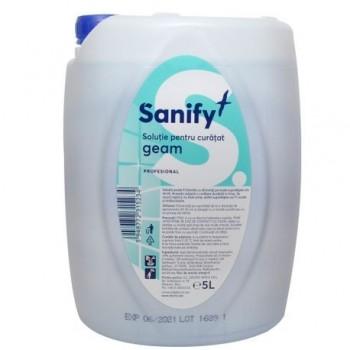 Detergent pentru geamuri Sanify, 5 l