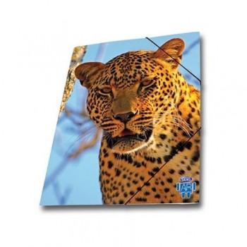 Mapa AR carton cu elastic Skag, 25 x 35 wild animals, leopard
