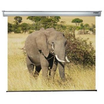 Ecran de proiectie montabil pe perete Sopar Platinum, 220 x 200cm, Mecanism de blocare, 3220PL, SP3220PL