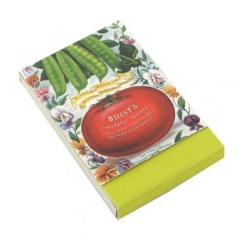 Mini jurnal Thinking Gift, magnetic, tomate