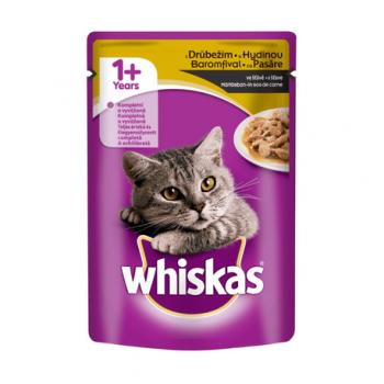 Hrana umeda pisici pasare 100gr