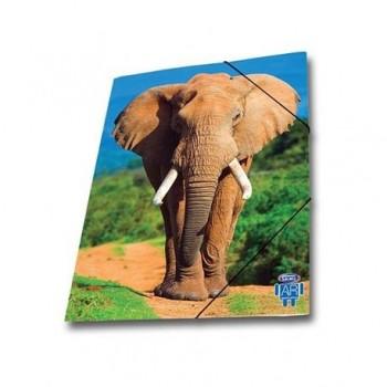 Mapa AR carton cu elastic Skag, 25 x 35 wild animals, elefant